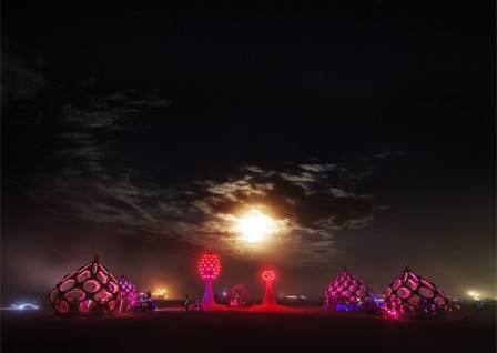 Trey Ratclif - Burning Man - Onion Domes-X2